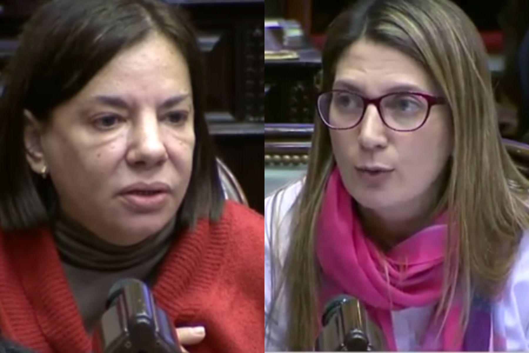 DiputadasSandra Mendoza ySilvia Lospenatto