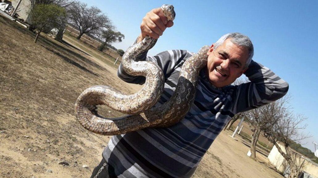 Las serpientes eran de gran tamaño