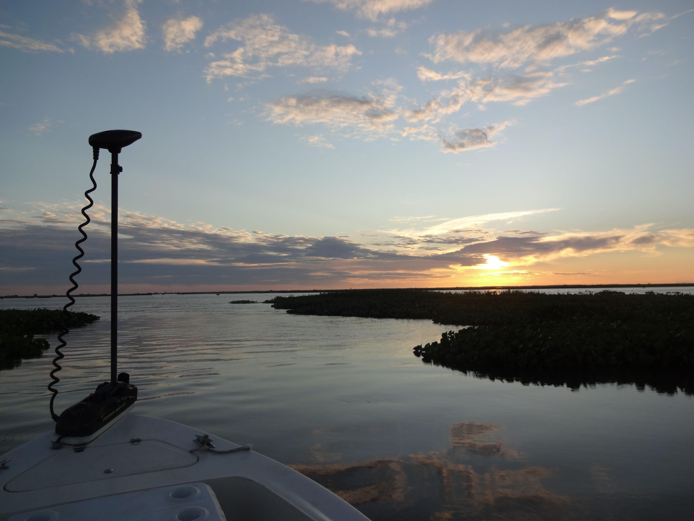 Río Paraná. Foto: www.doradosytruchas.com.ar