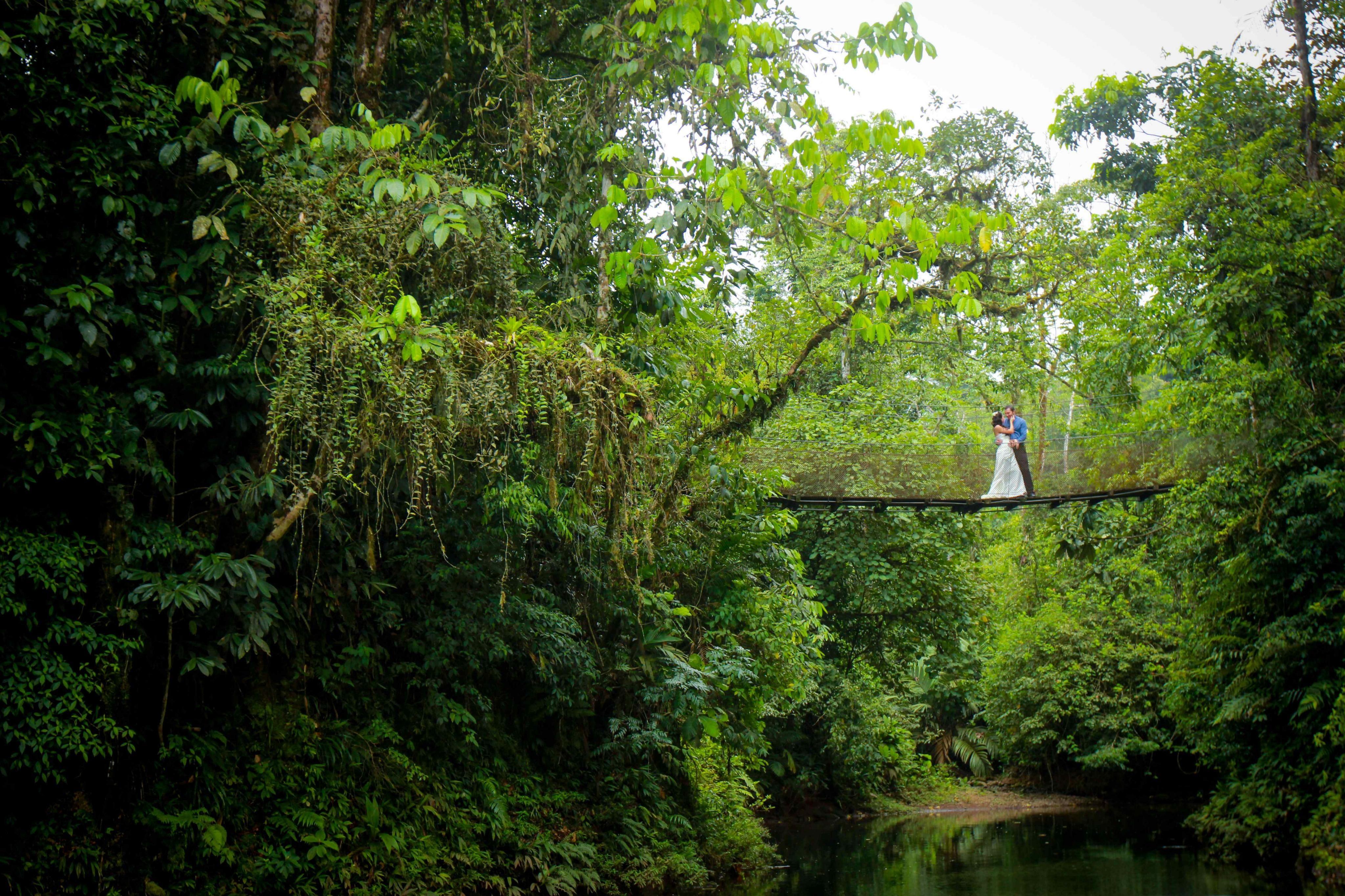 Toda la exuberancia de la selva para adornar un día perfecto