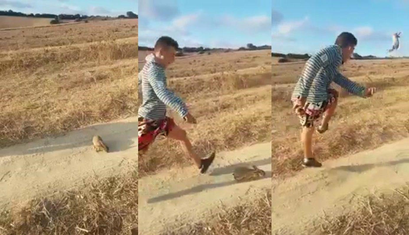 Gritó ¡Cristiano Ronaldo! y pateó un conejo a más de 20 metros