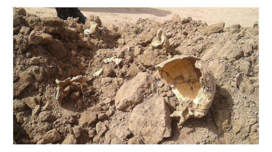 Estos son los huesos que encontraron en Metán