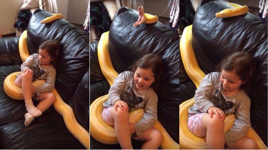 Dejó a su hija con una pitón en el sofá