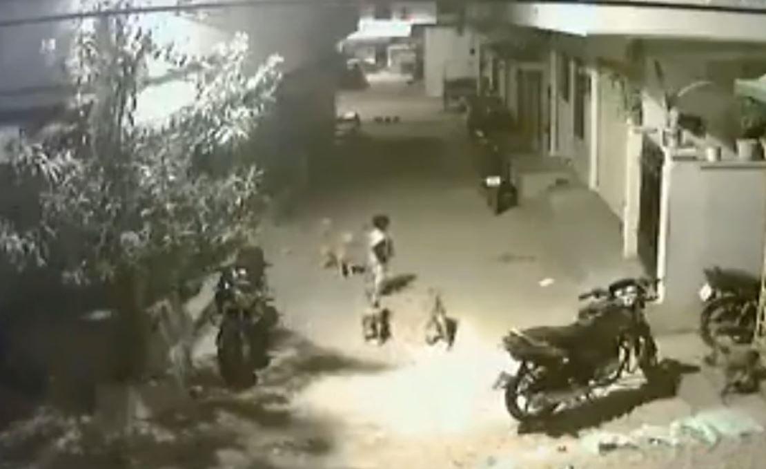 Un nene le hizo frente a una jauría para defender a su amiga