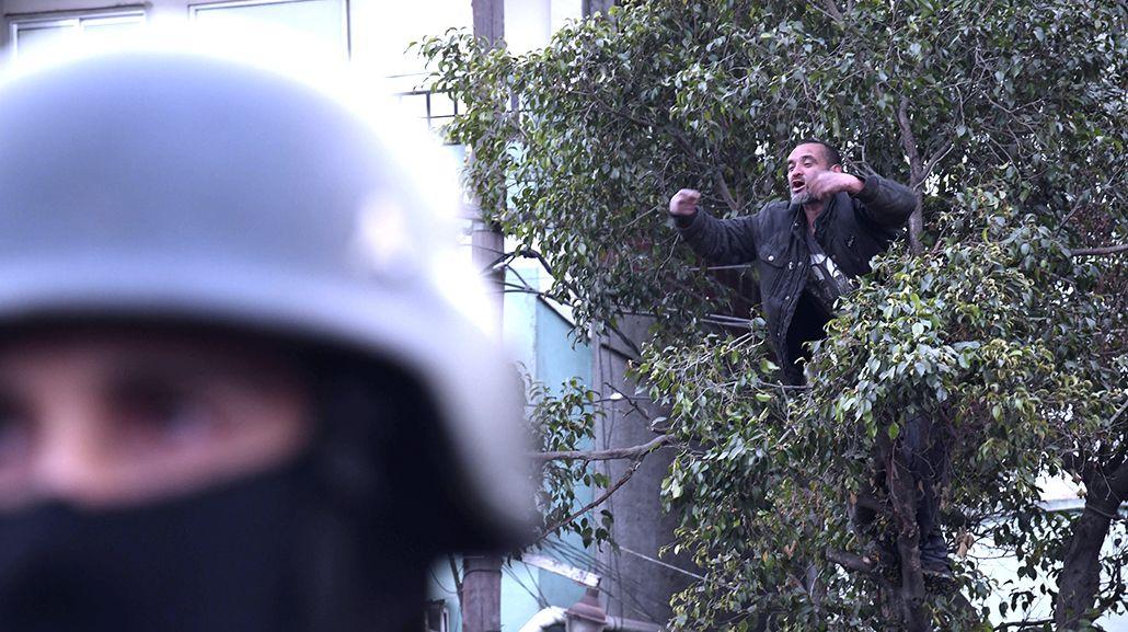 Hombre en el árbol