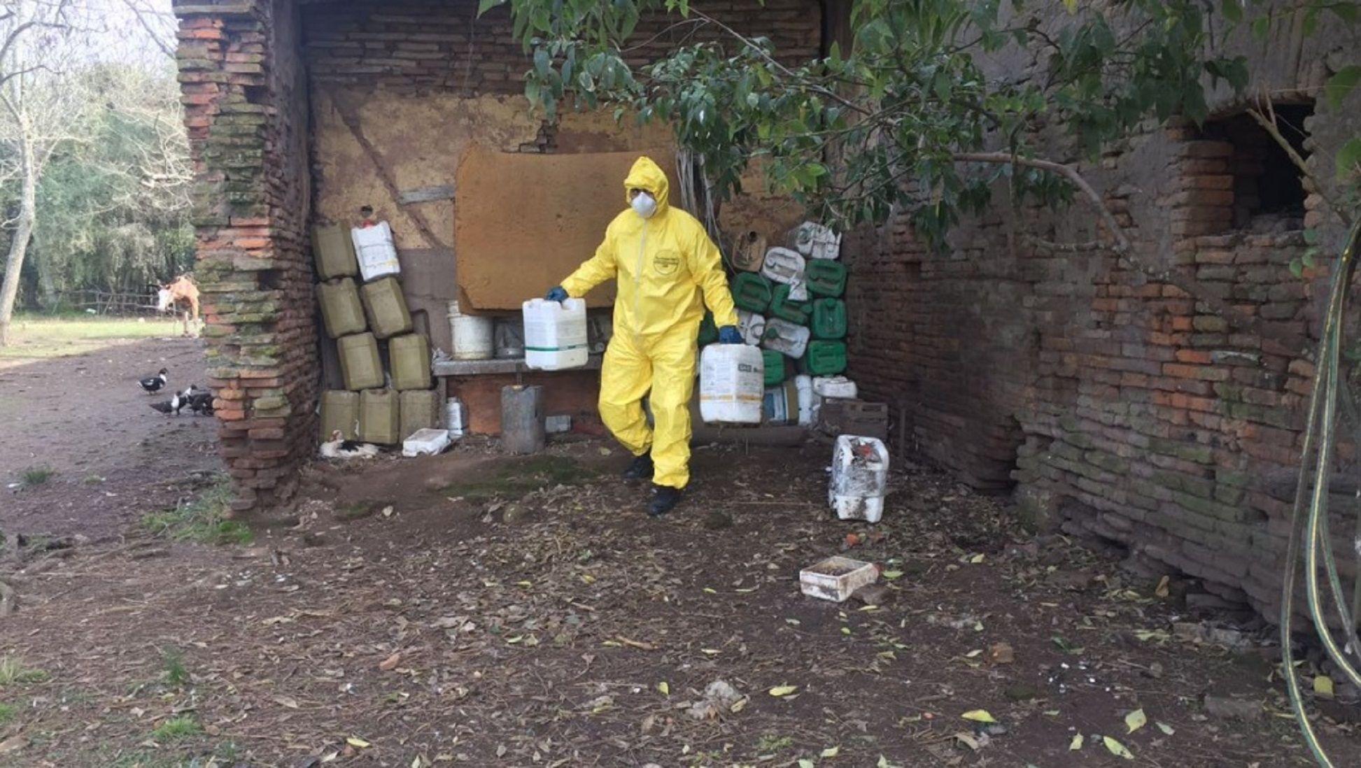 Conmoción en La Plata por el envenenamiento masivo de perros