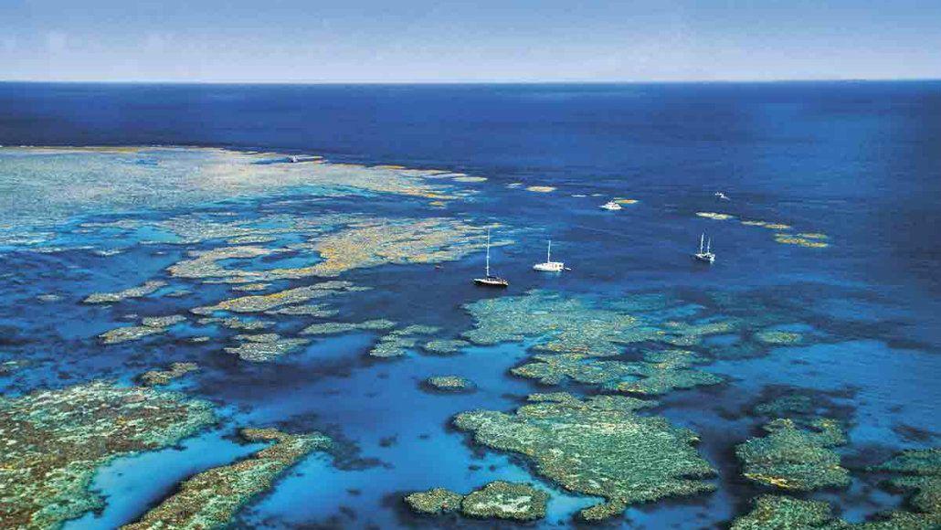 Todavía se reciben visitas en la Gran Barrera de Queensland