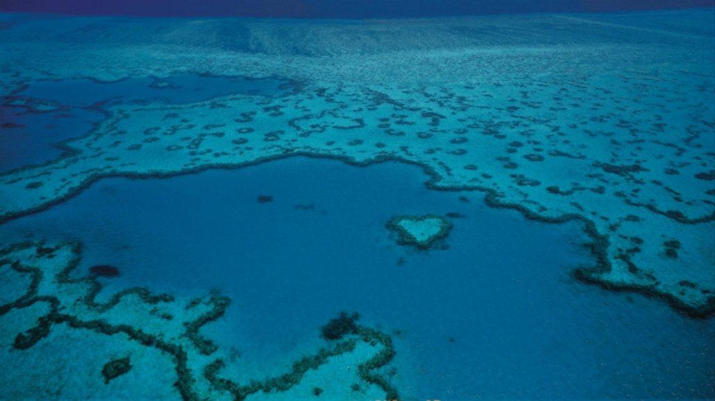 La Gran Barrera de Coral está en peligro por el cambio climático