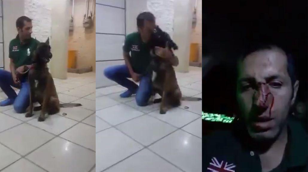 Le quiso dar un beso al perro y terminó con la cara mordida