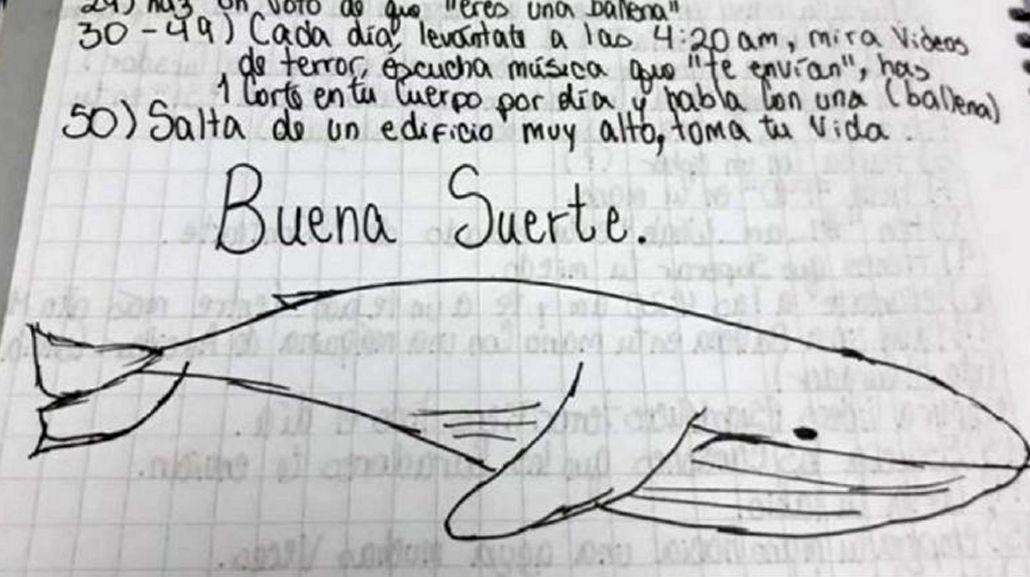 Entre Ríos: murió un joven tras jugar a la Ballena Azul