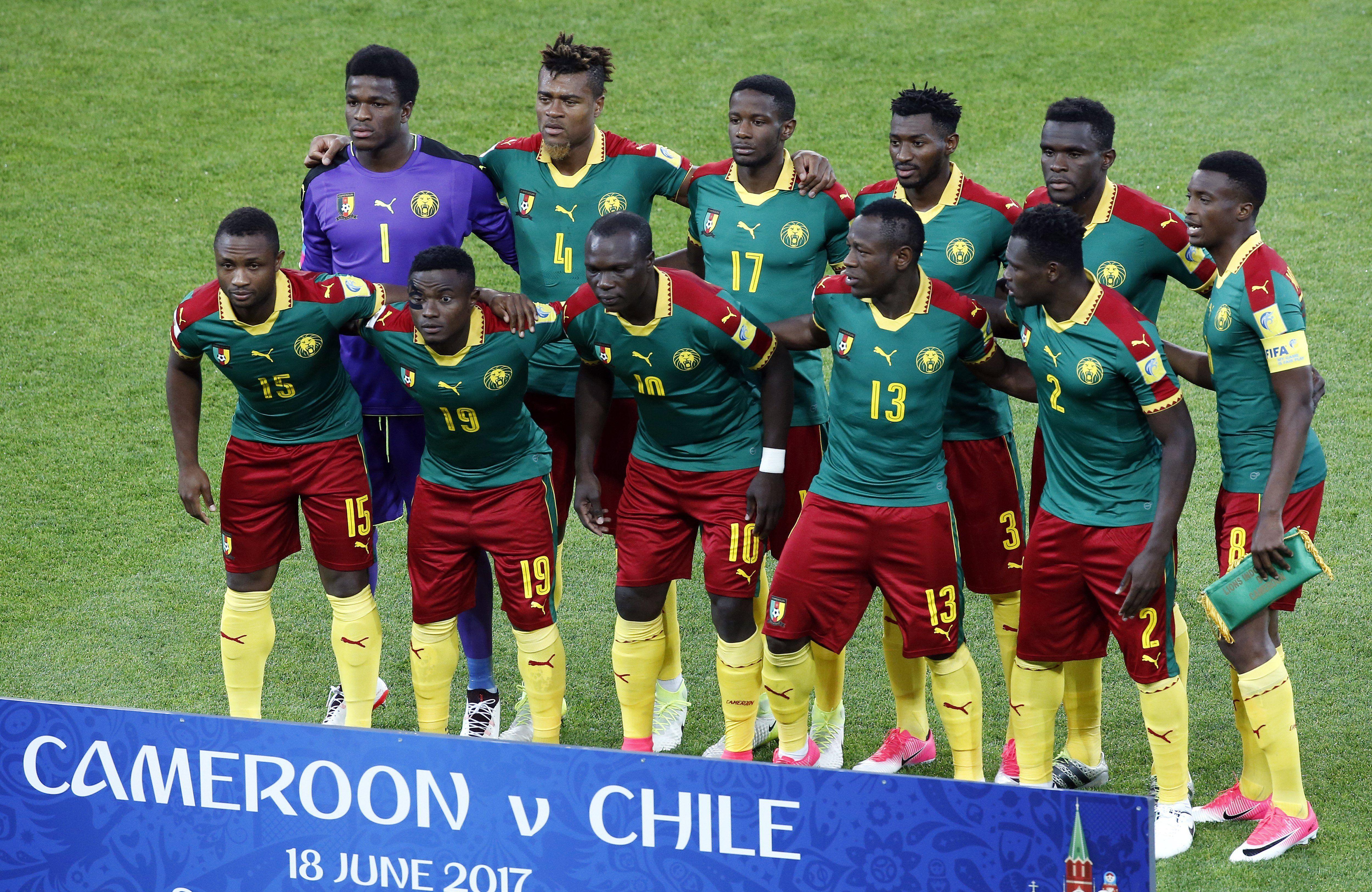 Los Leones africanos