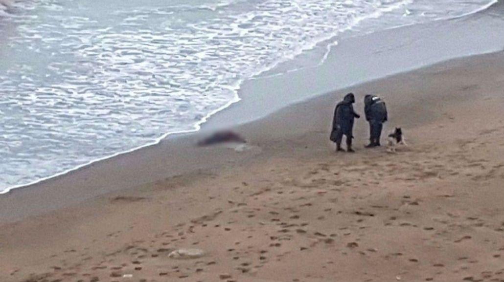 El cuerpo de la mujer fue encontrado en la costa