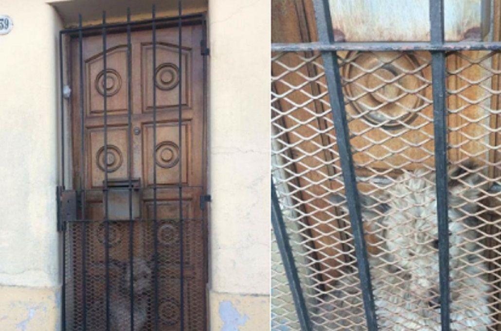 Ocurrió en una vivienda de Quilmes