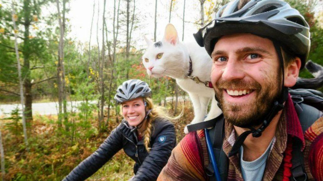 Vladimir es un gato viajero gracias a sus dueños