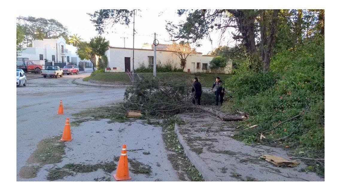 Varios daños se registraron tras el temporal
