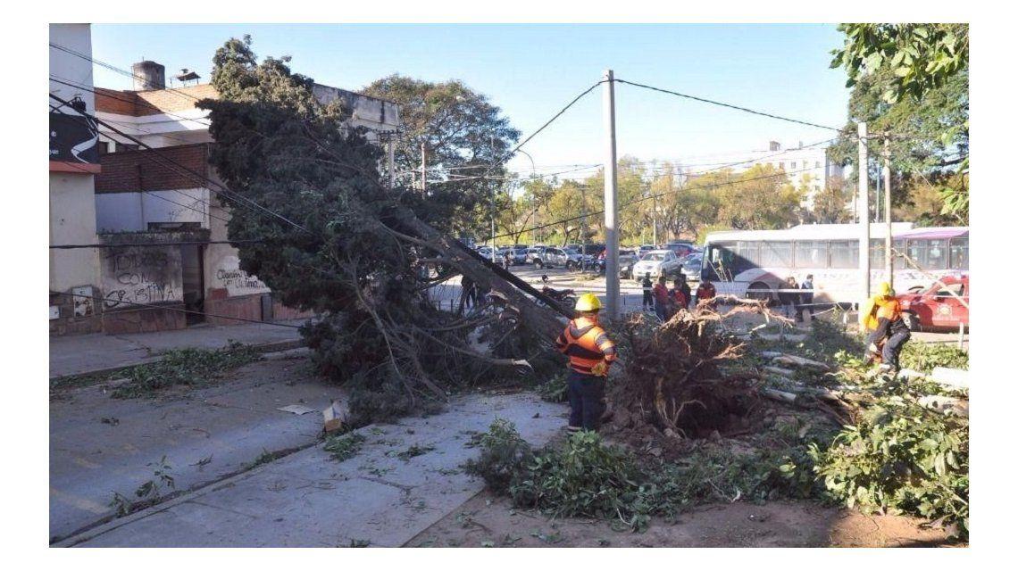 Tres muertos en Jujuy por un temporal