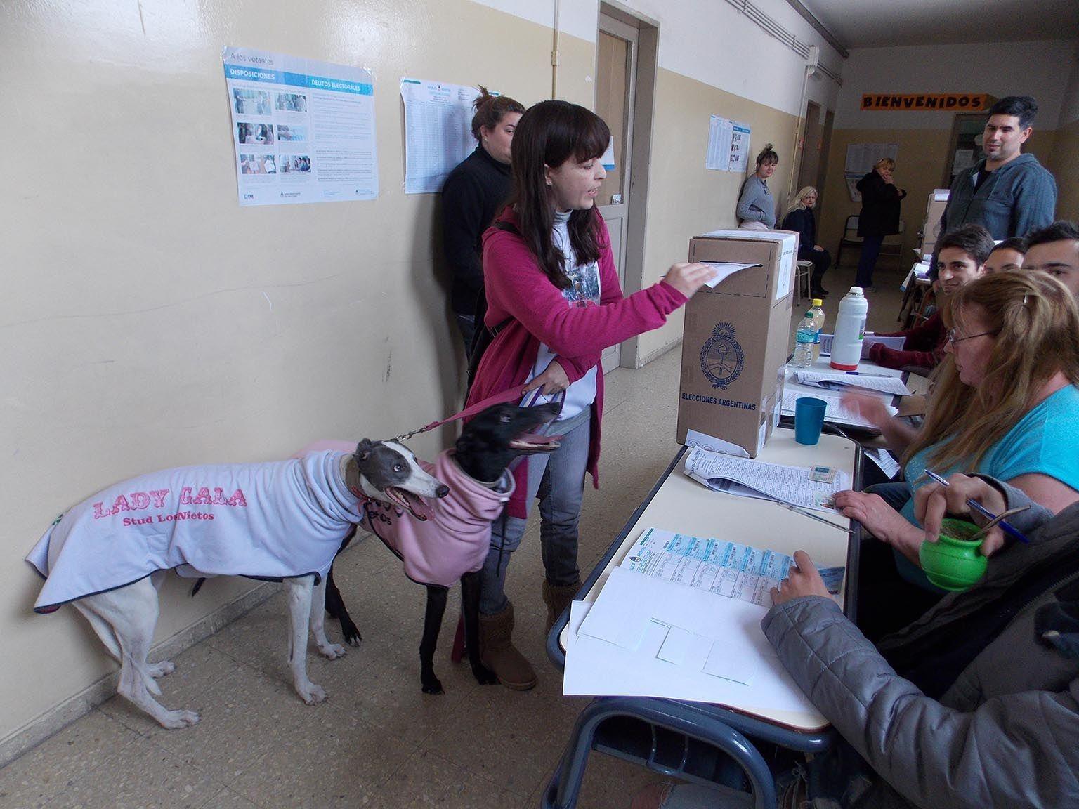 Paola Bafundo fue a votar con dos perras galgo