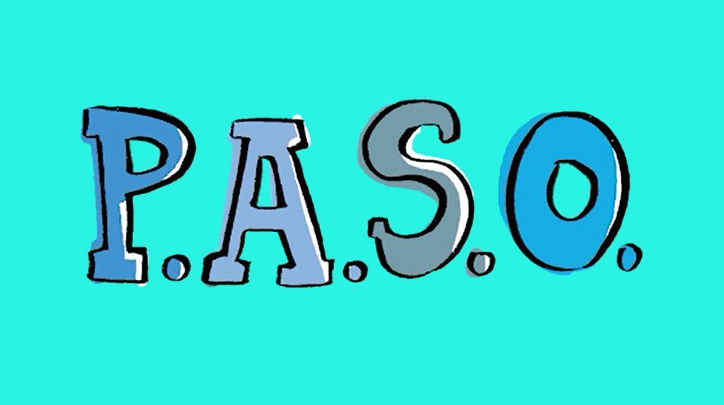 Todo lo que tenés que saber de las PASO en 90 segundos