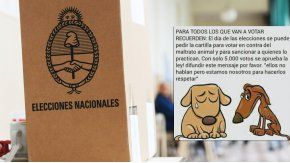 Un viral contra el maltrato animal induce a la impugnación del voto