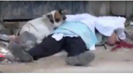 Un perro lloró al lado de su dueño asesinado