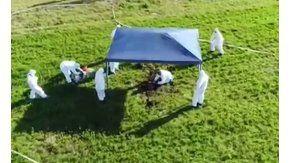 Durante los rastrillajes buscando a Anahí encontramos ocho cuerpos