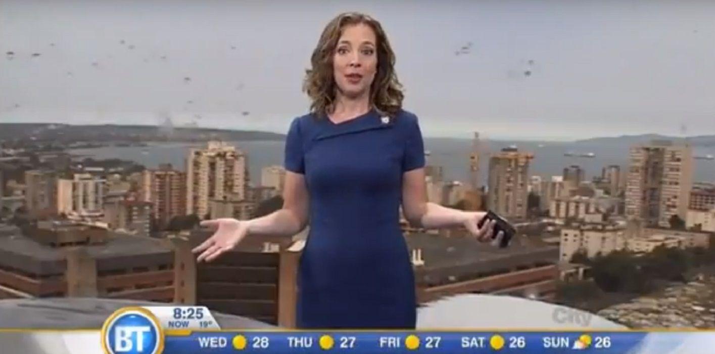 La invitada menos esperada que puso en apuros a una presentadora del clima