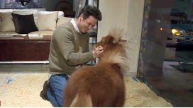 Sasha Fradusco, el dueño del local justificó la exhibición del animal