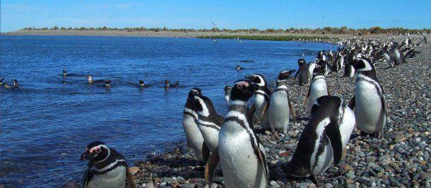 Puerto Madryn<br>