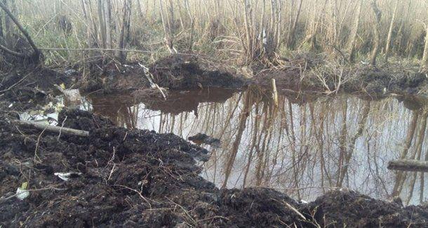 El pantano del río Paraná donde fueron hallados los restos del avión.
