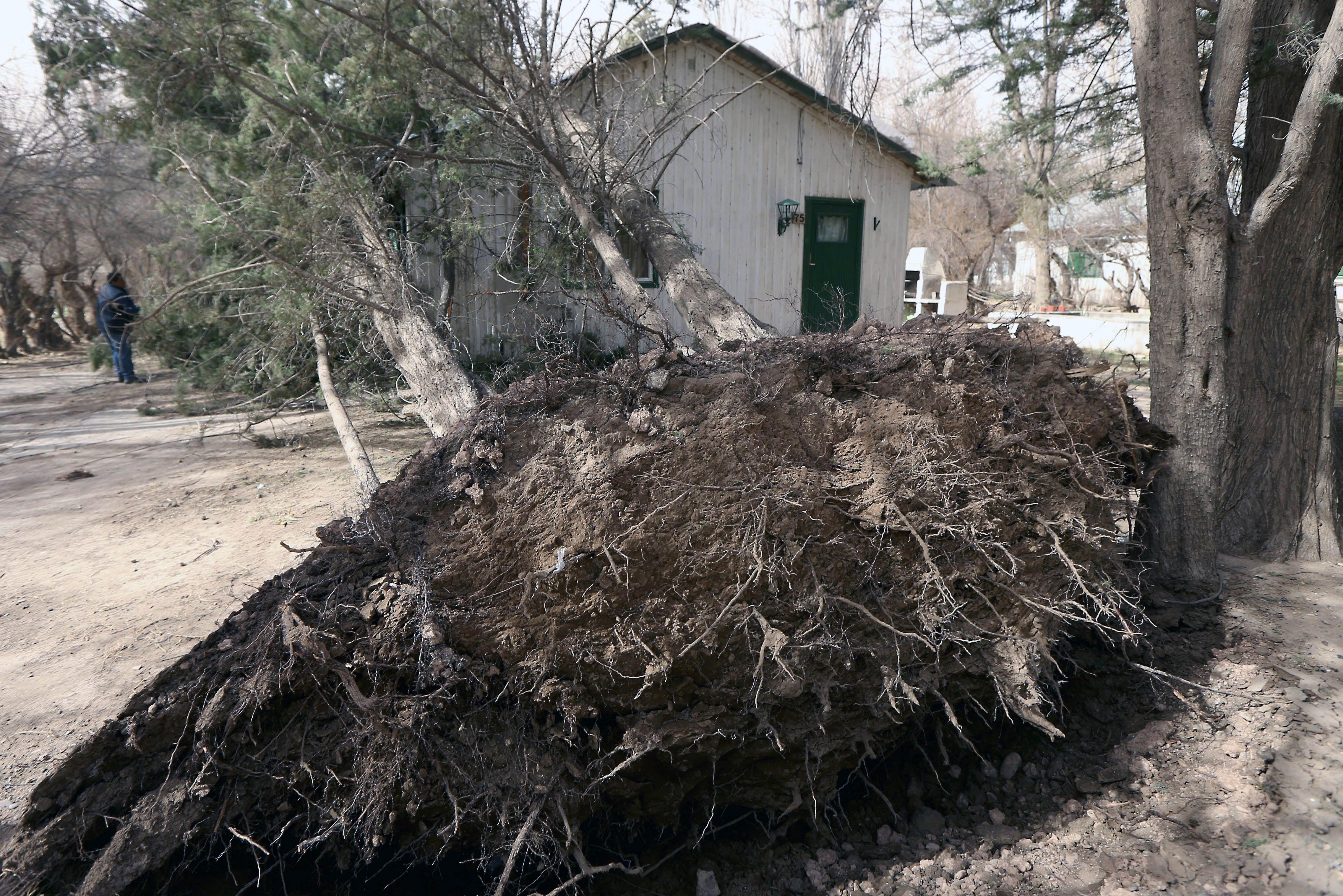 El fuerte viento provocó innumerables destrozos