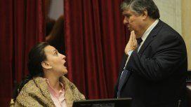Otro papelón de Michetti: le cortó la palabra a dos senadores