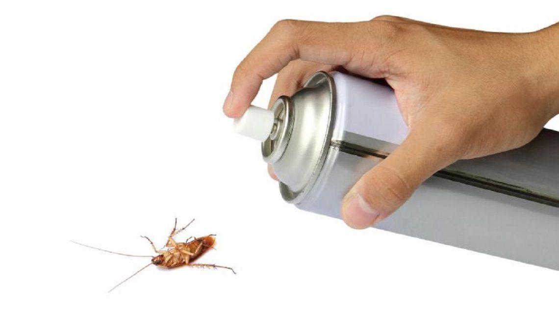 La Anmat prohíbió la venta y el uso de un insecticida