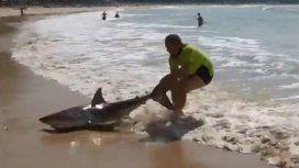 Un hombre agarró de la cola a un tiburón y lo volvió a meter al agua