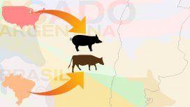 El Gobierno ahora autorizó la importación de carne vacuna desde Brasil