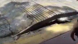 Extraño fenómeno en el asfalto tras el terremoto en México