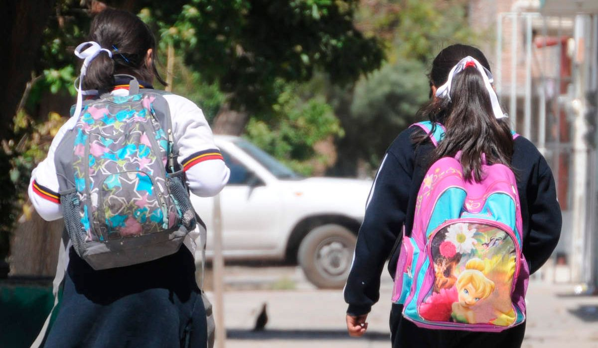 Presentaron un proyecto para regular el peso de las mochilas escolares en la Provincia