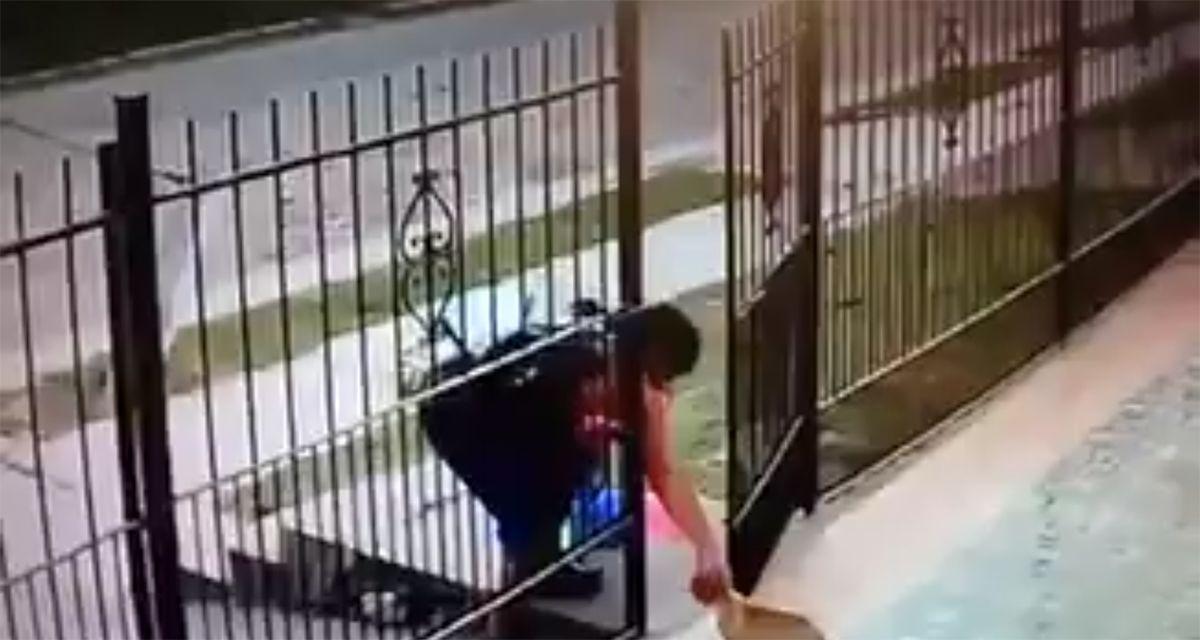 Desalmado: así le robó el perrito a un vecino en San Miguel de Tucumán