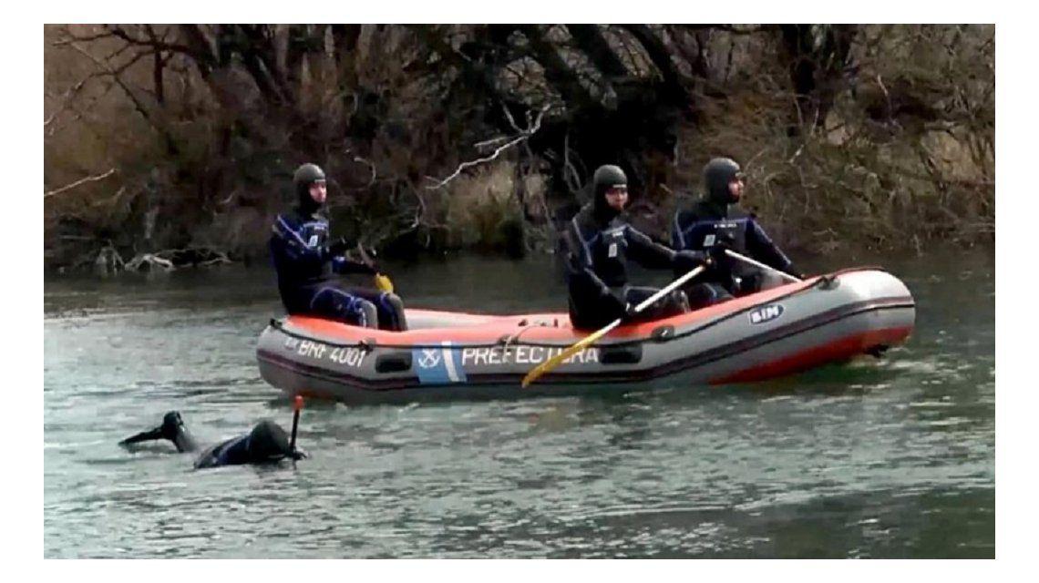 El cuerpo hallado en el río Chubut tenía el DNI de Santiago Maldonado