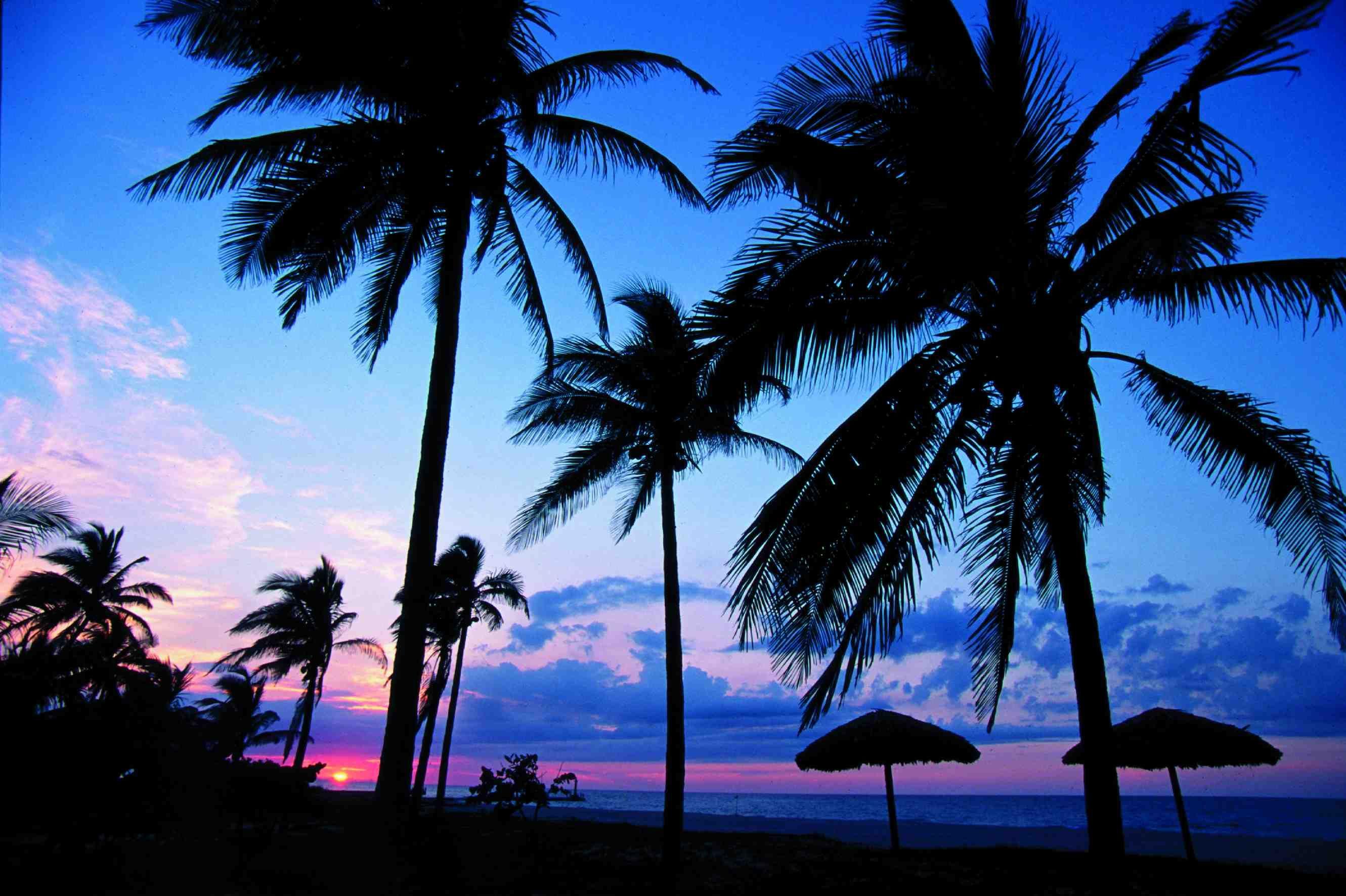 No hay antecedentes de ataques de tiburones en esta playa cubana.