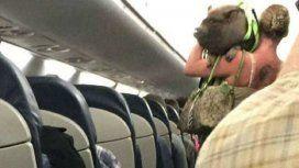 Subió al avión con un chancho que hizo caca en el pasillo y la echaron