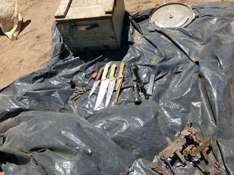 Hallaron un matadero clandestino de caballos en Mendoza