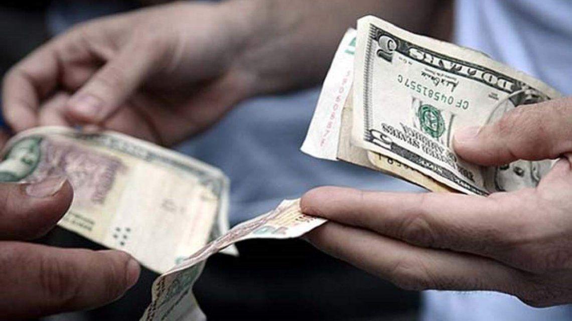 El Banco Central blanqueó a los arbolitos y ahora serán legales