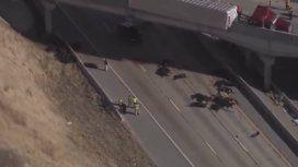 Los animales quedaron muertos sobre la autopista en Utah