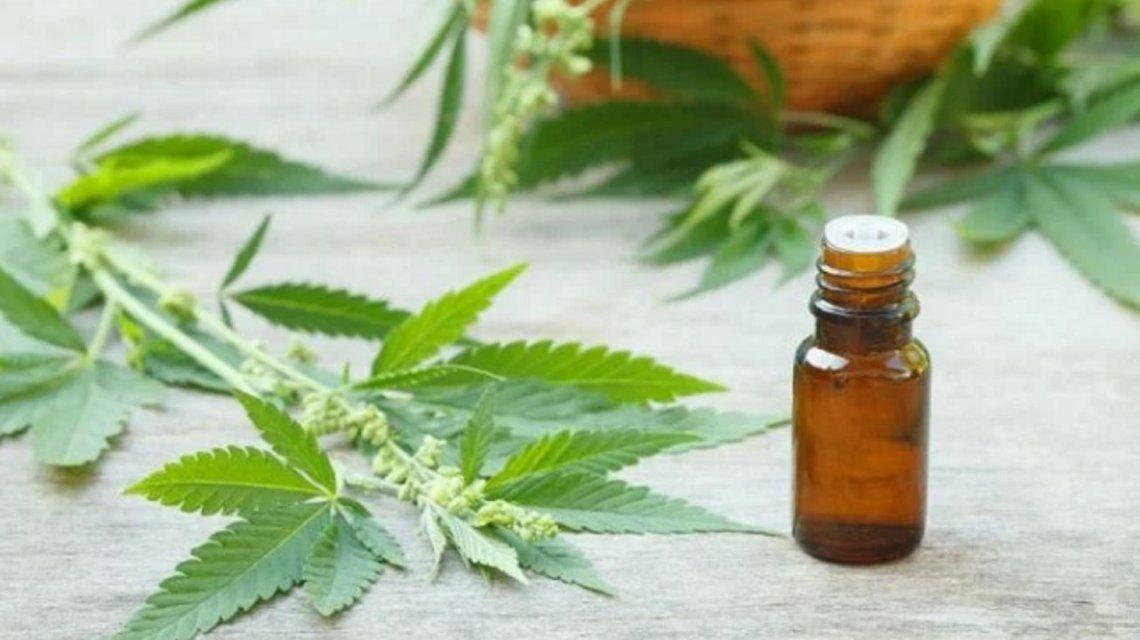 Abrieron el primer local de venta de aceite de cannabis en el país