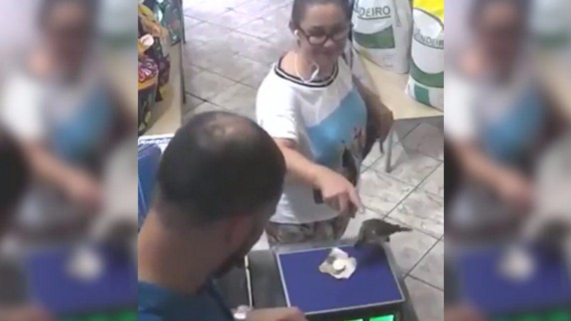VIDEO: Fue a pagar y un pájaro le robó la plata