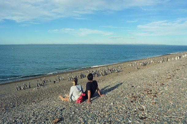 La Reserva El Pedral está ubicada en Punta Ninfas<br>