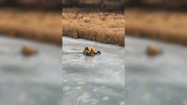 La policía tuvo que rescatar al perro que había quedado varado en el hielo