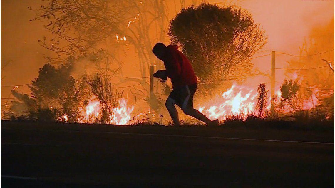 El hombre arriesgó su vida para salvar al conejo asustado por el fuego