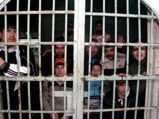 Los presos tienen estudios primarios completos en su mayoría