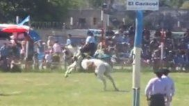 Un caballo murió en medio de una doma en Chubut